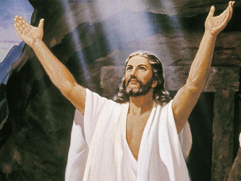 哈利路亚感谢赞美主的复活大能 如此的感谢,赞美,仰望和祈求